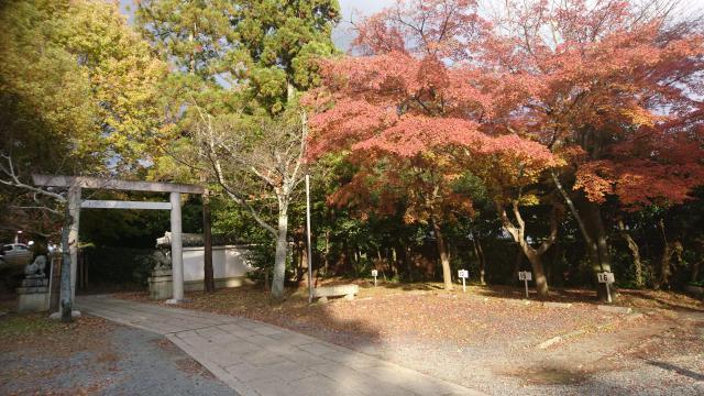 京都府宗忠神社の鳥居