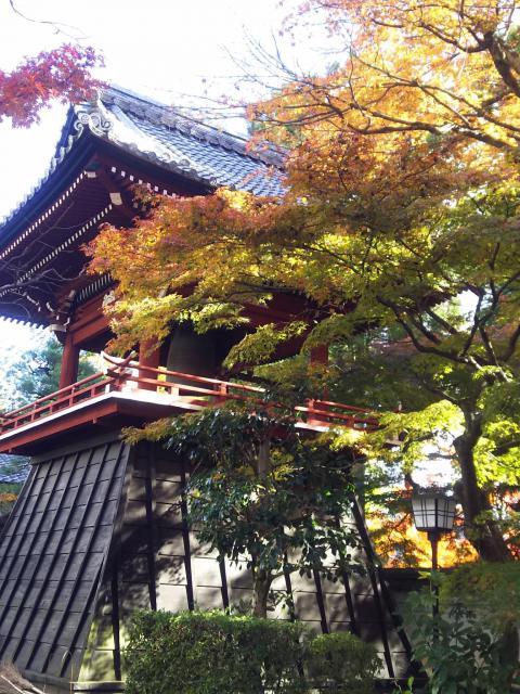 岐阜県清泰寺の建物その他