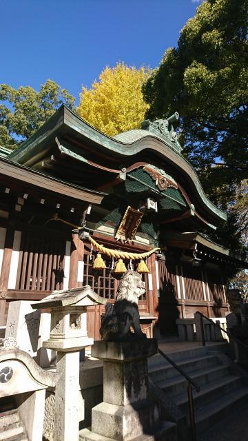 愛知県挙母神社の本殿