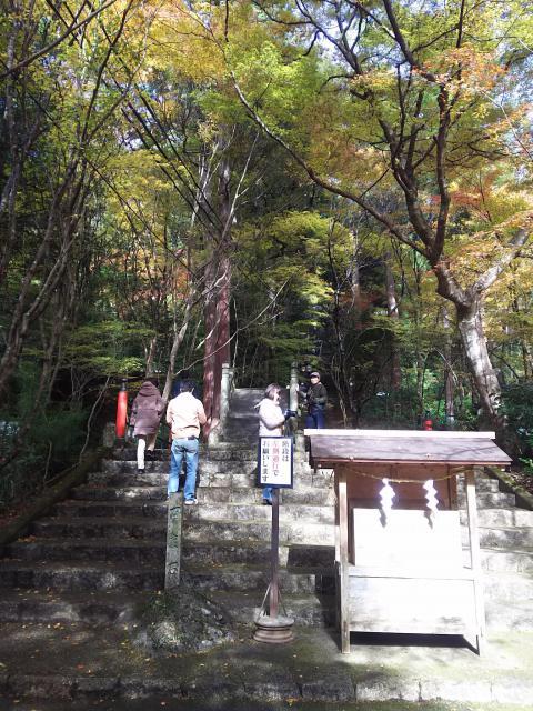 大矢田神社の建物その他