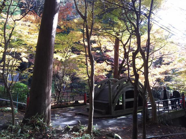大矢田神社の庭園
