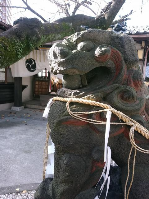 福岡県日吉神社の狛犬