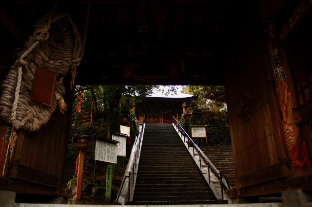 塩澤寺の自然