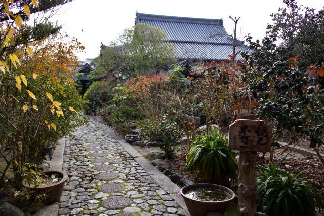 天真院の庭園