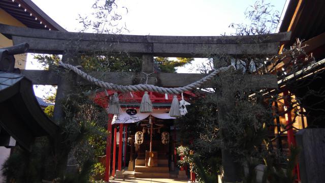 葛飾氷川神社(東京都堀切菖蒲園駅) - 鳥居の写真