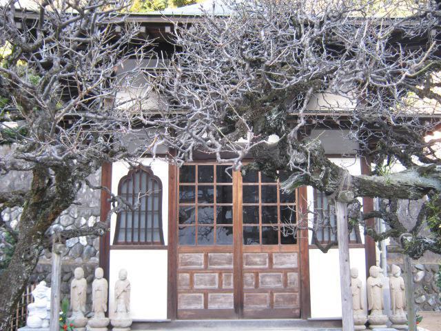 高松寺(神奈川県戸塚駅) - 本殿・本堂の写真