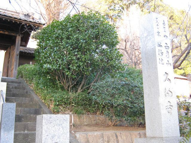 神奈川県大仙寺の写真