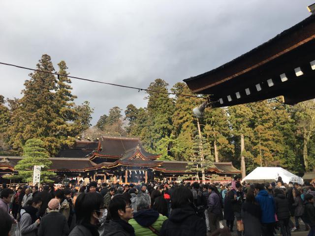 多賀大社の初詣