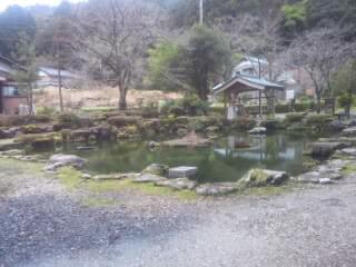 福井県大虫神社の自然