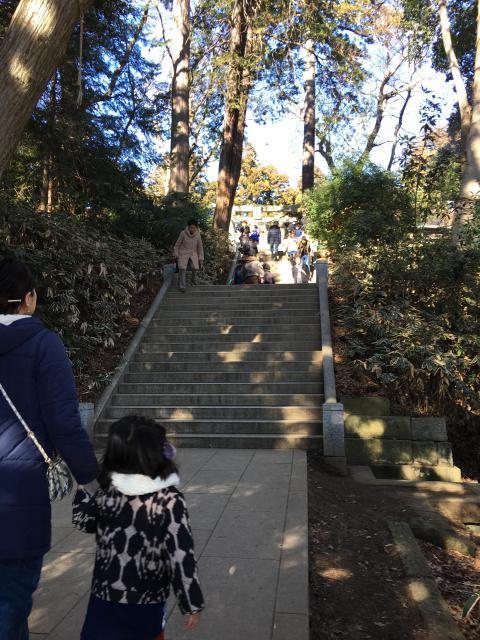 阿夫利神社(千葉県千葉ニュータウン中央駅) - 自然の写真