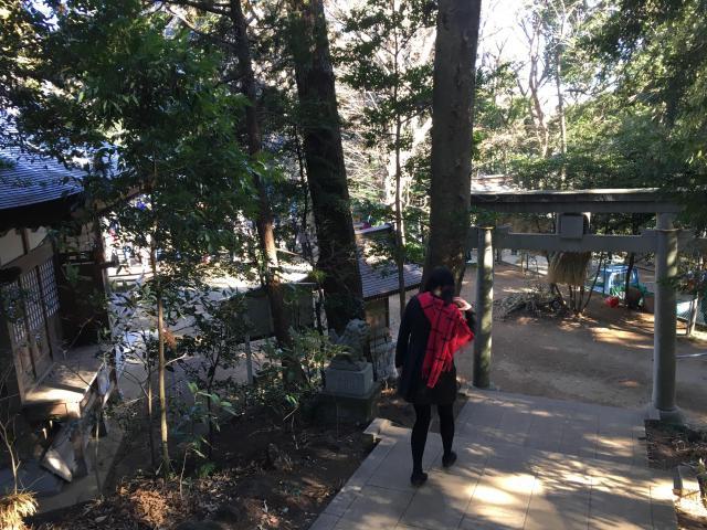 阿夫利神社(千葉県千葉ニュータウン中央駅) - 鳥居の写真