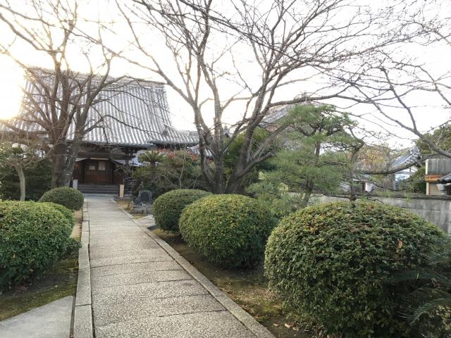 善慶寺の自然