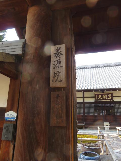 相国寺の近くの神社お寺|養源院