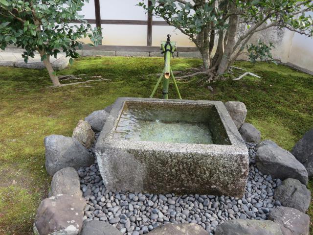 豊光寺の自然