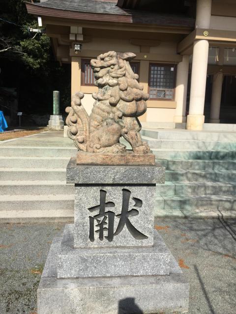 光雲神社(福岡県大濠公園駅) - 狛犬の写真