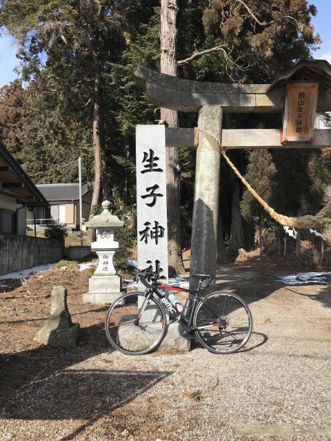 栃木県生子神社の鳥居