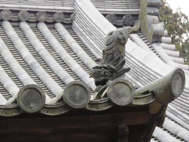 知足院の狛犬