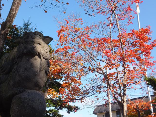 当別神社(北海道石狩当別駅) - 狛犬の写真