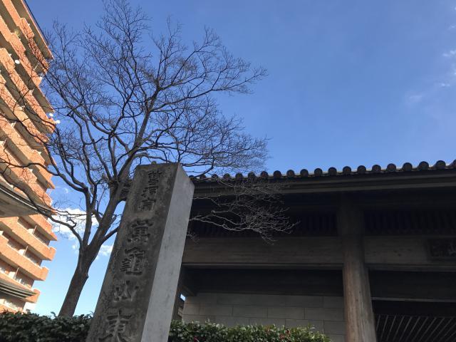 東京都東長寺の写真