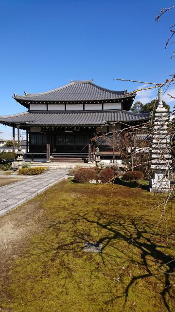 滋賀県大徳寺の本殿