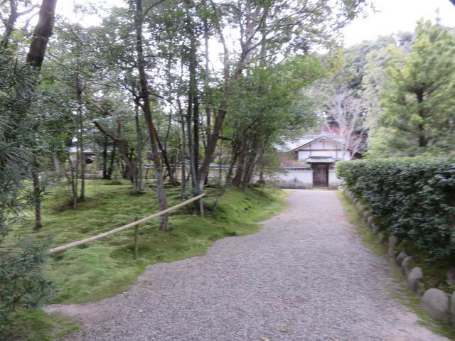秋篠寺の自然