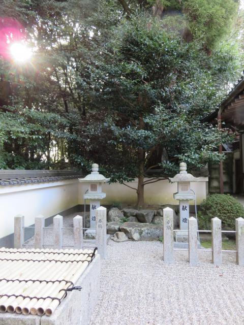 八所御霊神社の自然