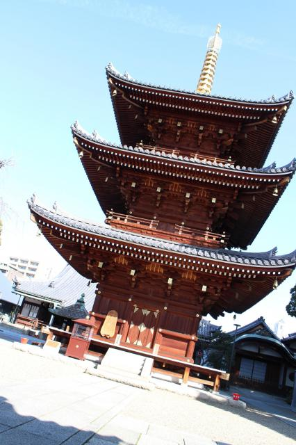 法楽寺(大阪府南田辺駅) - 塔の写真