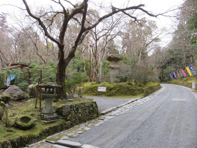 赤山禅院の自然