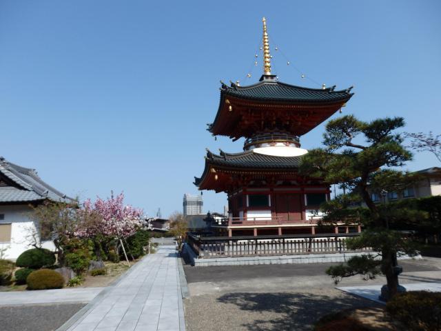 龍宝寺の塔