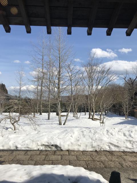 慈眼寺の自然