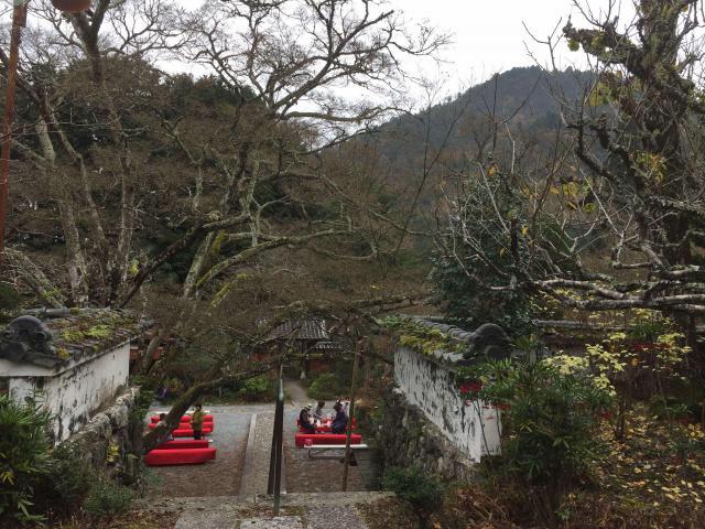 京都府神藏寺の自然