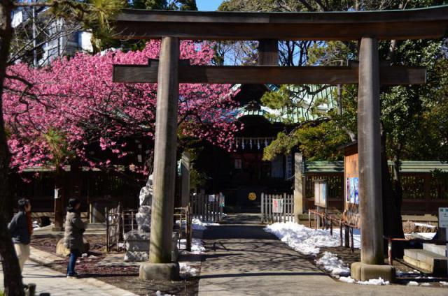 東京都荏原神社の鳥居