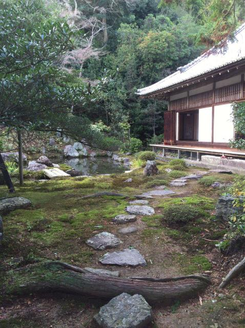 浄住寺の庭園