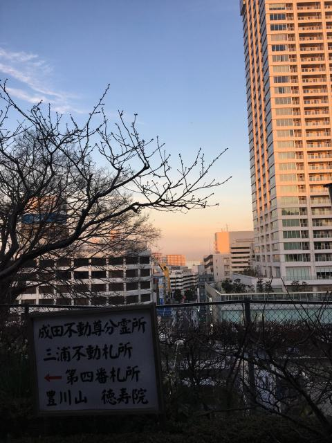 徳寿院の景色