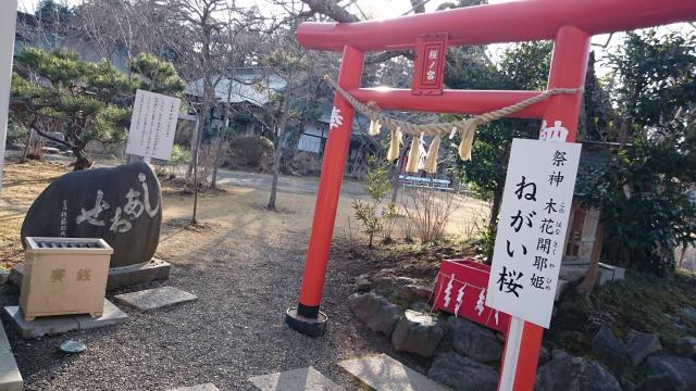 茨城県茨城県護国神社の本殿