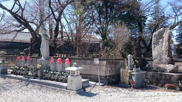 長寿院の仏像