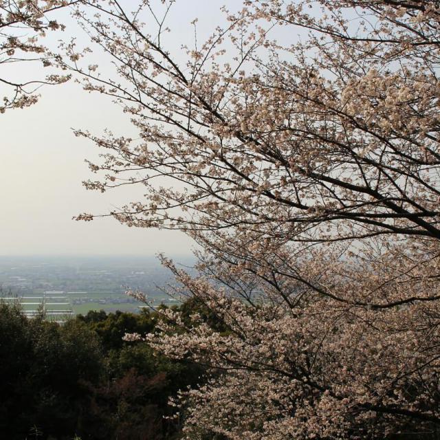清水寺の景色