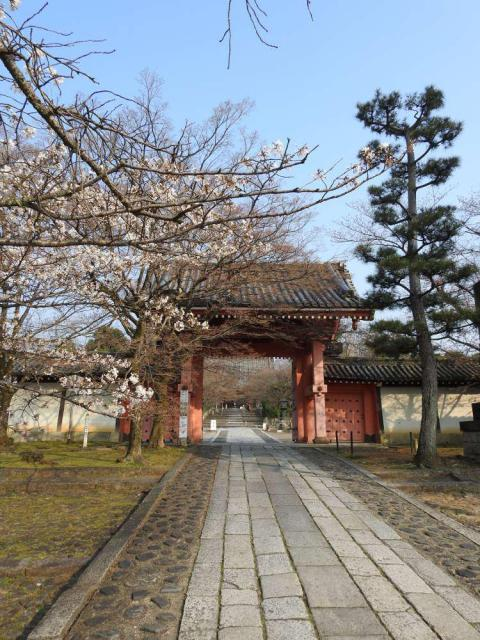 京都府真正極楽寺(真如堂)の山門