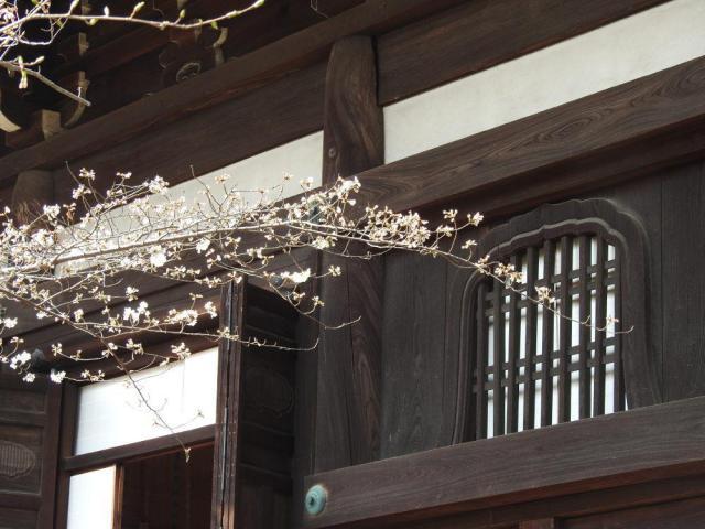 京都府真正極楽寺(真如堂)の本殿