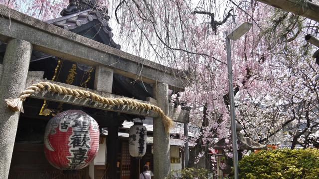 京都府雨宝院の鳥居