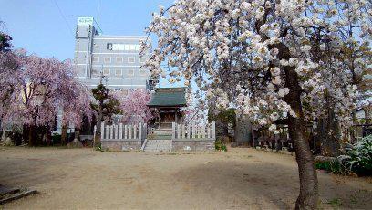 権現神社(千葉県成田駅) - その他建物の写真
