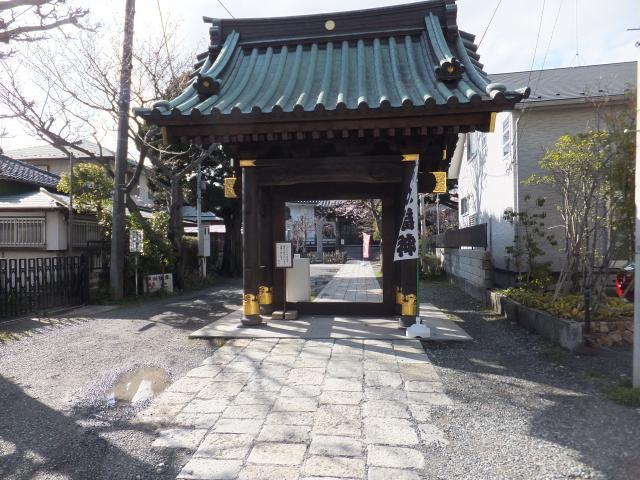 妙隆寺(神奈川県鎌倉駅) - 山門・神門の写真