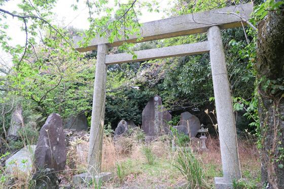 静岡県信名明神天神山神社の鳥居