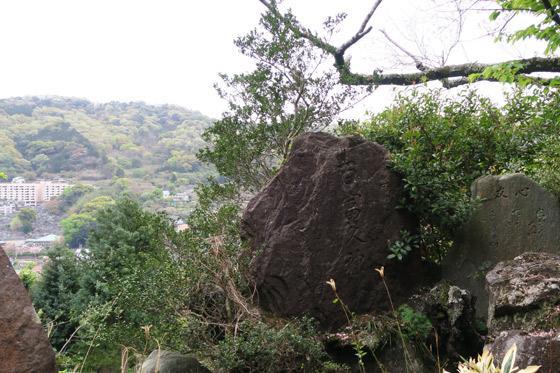 静岡県信名明神天神山神社の写真