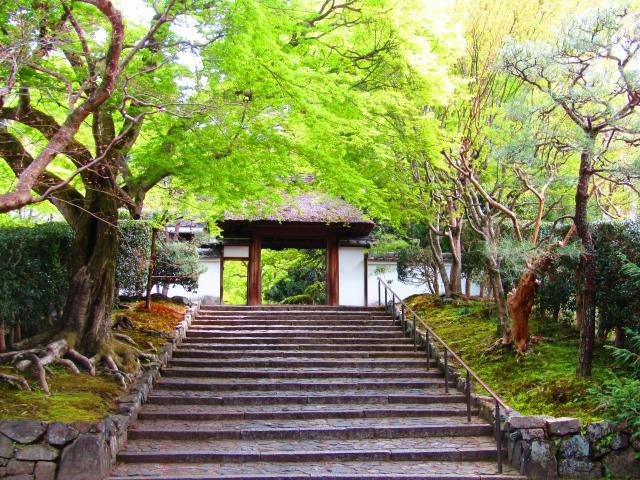 安楽寺の山門