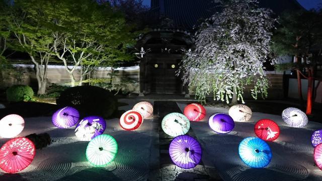 妙顕寺の庭園