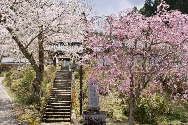 京都府福徳寺の建物その他