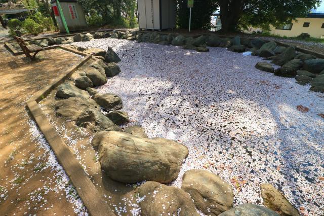 龍峰寺の庭園