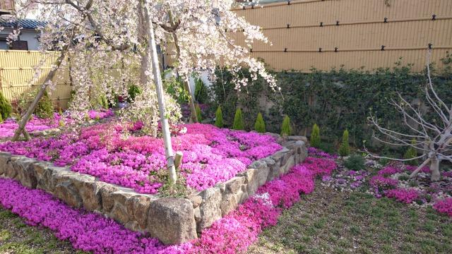 寿量山 速成寺の庭園