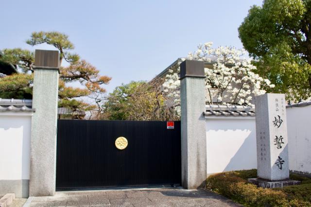 賀茂御祖神社(下鴨神社)の近くの神社お寺 妙誓寺